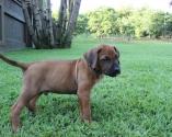 Schuyler at 6 weeks