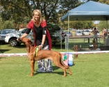 Scarlet at her first show